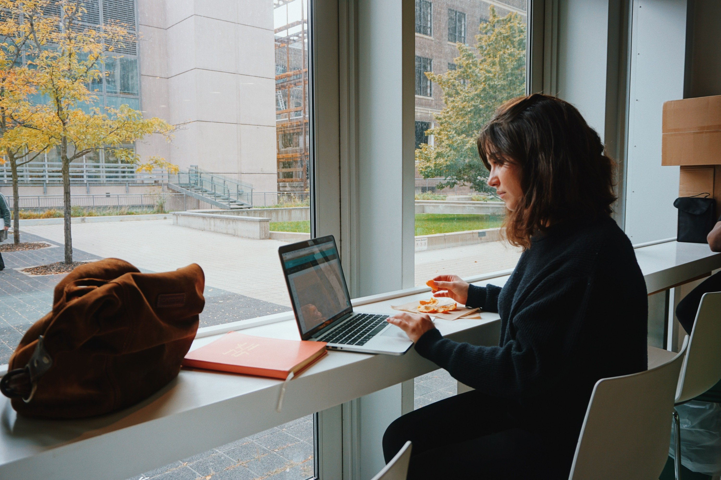 Female student sitting next to a window working on her laptop