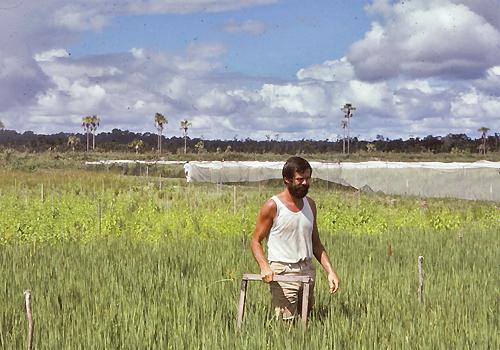 Spencer Barrett standing in tall grass.