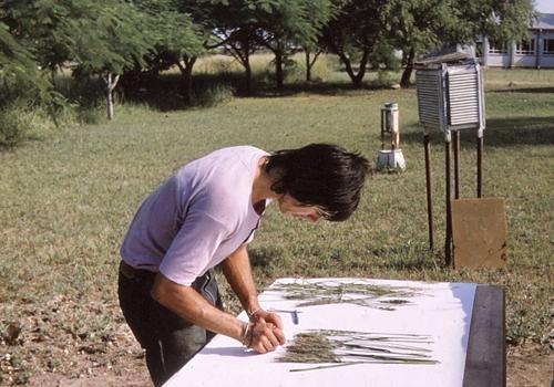 Spencer Barrett examining plants on a table.
