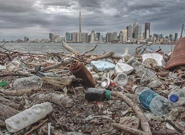 Garbage on the shore of Ward Island in Toronto