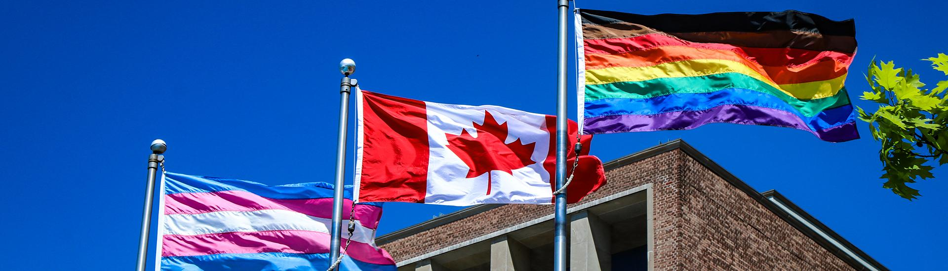 Pride flags flyring next to Canadian flag